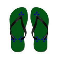 Blue Checkers on Green Flip Flops