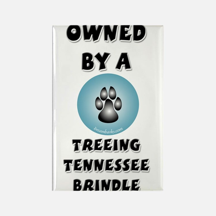 Owned by a TTB Rectangle Magnet (10 pack)