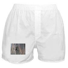 Spiffy's eye Boxer Shorts