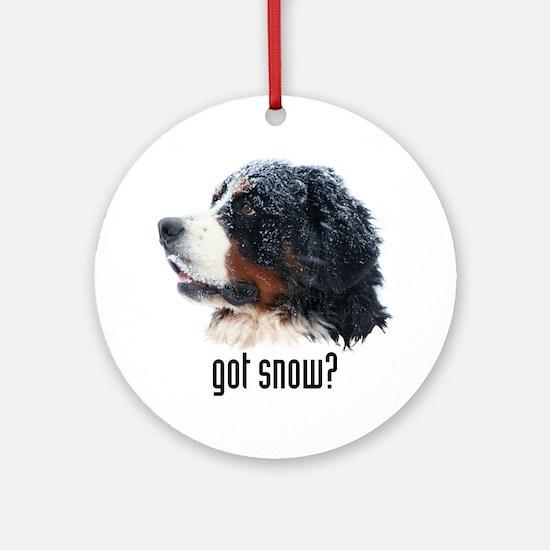 got snow? Ornament (Round)