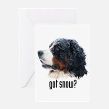 got snow? Greeting Card