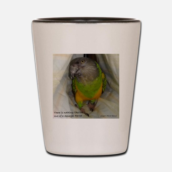 Cute Senegal parrot Shot Glass