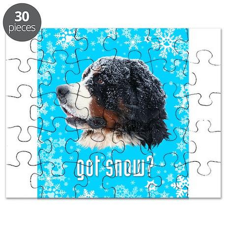 got snow? Puzzle