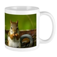 Baby Squirrel Small Mug