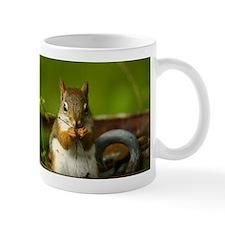Baby Squirrel Small Small Mug