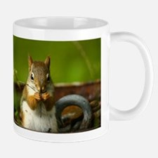 Baby Squirrel Small Small Mug