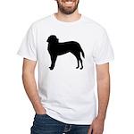 Saint Bernard Silhouette White T-Shirt
