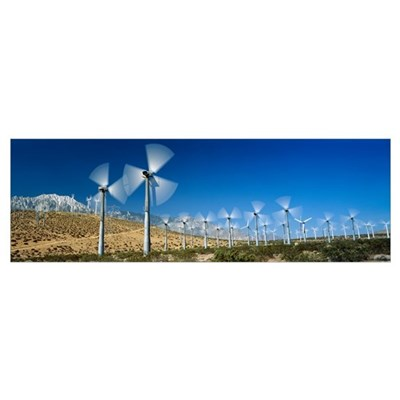 Wind turbines spinning in a field, Palm Springs, C Poster