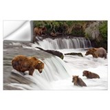 Brooks falls katmai Wall Decals