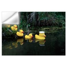 Rubber Ducks in a Row Pond Southcentral Alaska Wall Decal