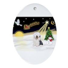 Night Flight/OES #2 Ornament (Oval)