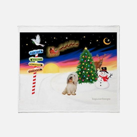 XmasSigns/PBGV #2 Throw Blanket