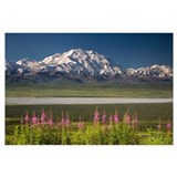 Denali national park Wrapped Canvas Art