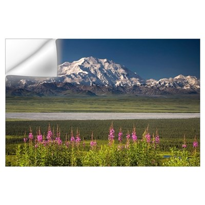 Mt. McKinley and the Alaska Range with fireweed fl Wall Decal