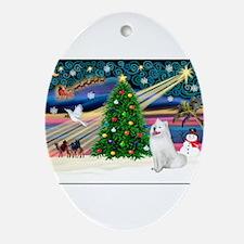 Xmas Magic & Samo Ornament (Oval)