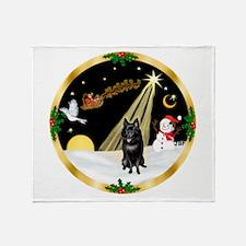 Night Flight/Schipperke Throw Blanket