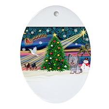 Xmas Magic / Skye Terrier (Bl Ornament (Oval)