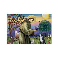 St Francis & Boston Terrier Rectangle Magnet (10 p
