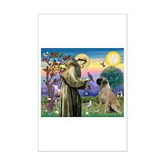 St Francis / Bullmastiff Posters
