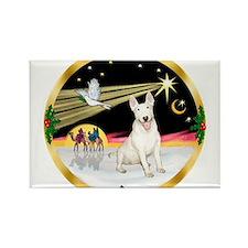 XmasDove/Bull Terrier Rectangle Magnet
