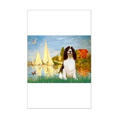 Sailboats & Springer Posters