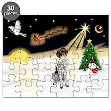 Night Flight/GSHP Puzzle