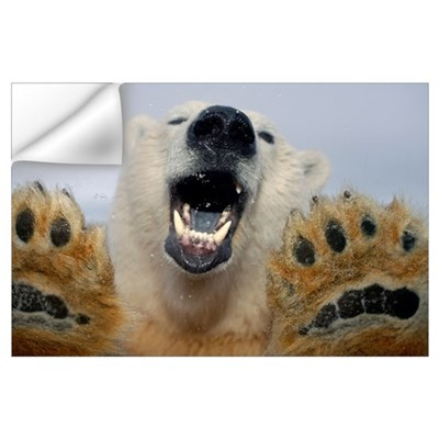 Polar Bear curiously looks in truck window Wall Decal