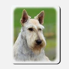 Scottish Terrier AA063D-101 Mousepad