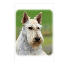 Scottish Terrier AA063D-101 Postcards (Package of