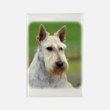 Scottish Terrier AA063D-101 Rectangle Magnet