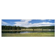 Yellowstone River Hayden Valley Yellowstone Nation Poster