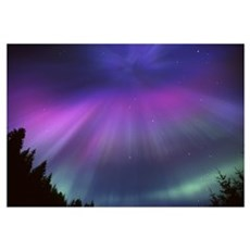 Aurora Corona Over Crow Creek Girdwood during Wint Canvas Art