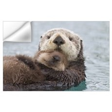 Female Sea otter holding newborn pup out of water, Wall Decal