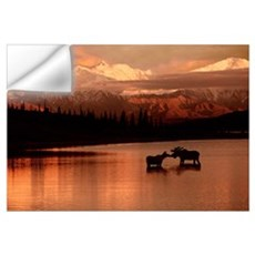 Moose Kissing in Wonder Lake Denali NP Digital Com Wall Decal