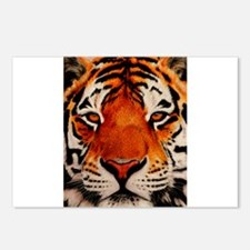 Unique Tigers Postcards (Package of 8)