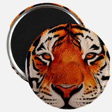 "Unique Tiger 2.25"" Magnet (100 pack)"