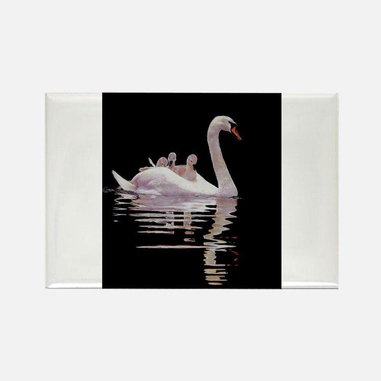 Cute Swan Rectangle Magnet