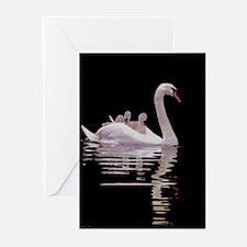 Cute Swan Greeting Cards (Pk of 20)