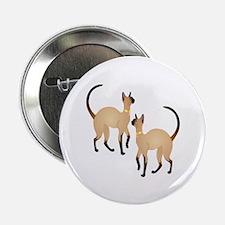 """Twin Siamese Cats 2.25"""" Button"""