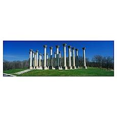 National Arboretum Washington DC Poster
