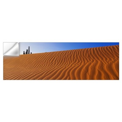 Sand Dune and Yei Bi Chei Wall Decal
