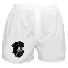 Rottweiler Head by Donna Boxer Shorts