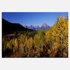 Wyoming, Grand Teton Park