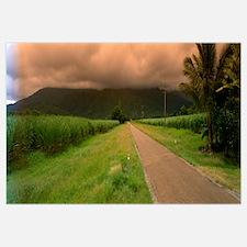 Mossman Gorge Road Queensland Australia