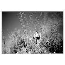 Hiker Superstition Wilderness Area AZ