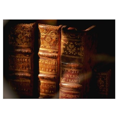 Antique Books Poster