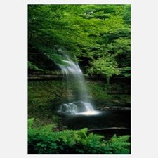 Yeats Waterfall Glencar Co SligoEire Ireland