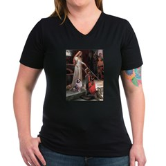 Accolade-AussieShep1 Shirt