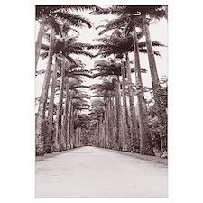 Path Rio De Janeiro Brazil