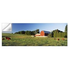 Red Barn Cattle Kent County MI Wall Decal